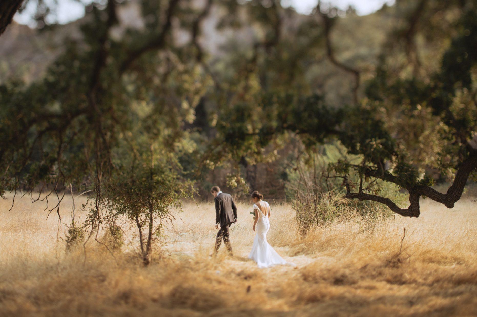 malibu creek state park wedding photos elopement
